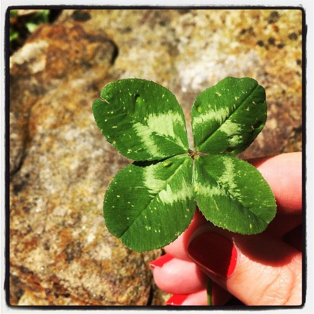 A little #luck never hurt any big event! Found while working in #utopia during #artsinharmony