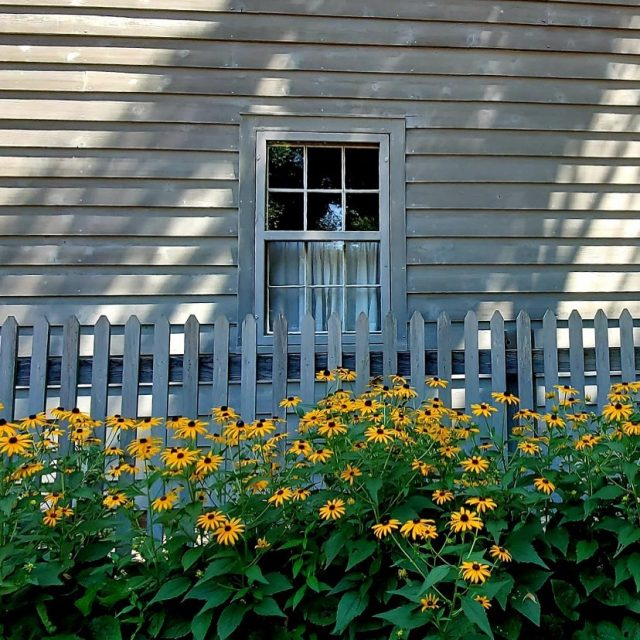 When historic architecture and nature blend beautifully...#colorsofnature #historichomes #historiccolors #homeinspo #visitnewharmony #shadowhunters #windowsofhistory #livinghistory #traditionalhomes #clapboardhouse #clapboard #antiquehomedecor photo credit midwestgazette
