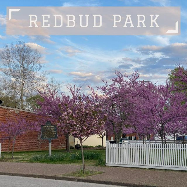 Take in the beauty of New Harmony in the spring time at Redbud Park. Named for the colorful redbud trees, the park is located in downtown New Harmony and is ideal for special events and celebrations! #VisitNewHarmony #NewHarmonyParks #OnlyinNewHarmony