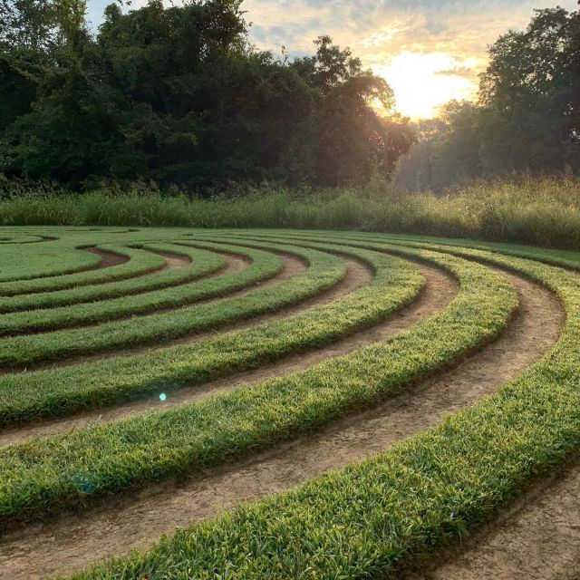 Utopian dreams are close to mind during this uncertain time. One of those Utopias is in New Harmony, Indiana, a home to myriad labyrinths. Some made of stone, others with traditional hedges—but each a place for peaceful meditation. Today's #travelmemory highlights a very special labyrinth that #TinyWorldTours had the opportunity to bring their guests to last September: this particular labyrinth was carved and shaped by the artist hands of Ben Nicholson, resident of New Harmony. It is maintained without any equipment, except for the feet of its creator and invited guests, as well as much patient nurturing. Truly a beautiful piece of experiential land art.